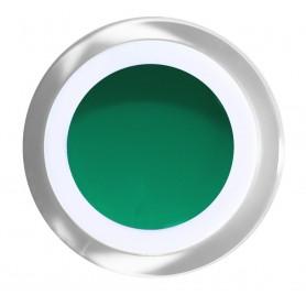 BN Gel Color N º 25 - Kingston  - 5ml