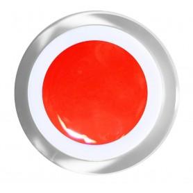 BN Gel Color N º 41 - Amsterdan - 5ml